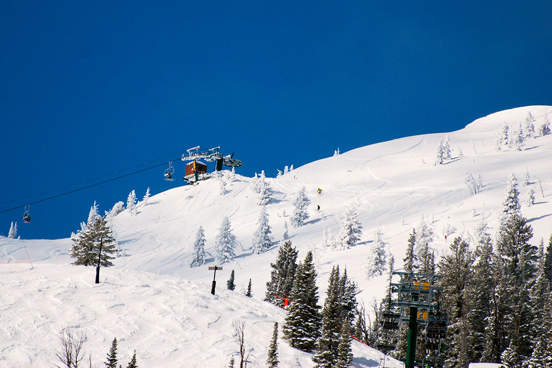 Bridger Bowl resort