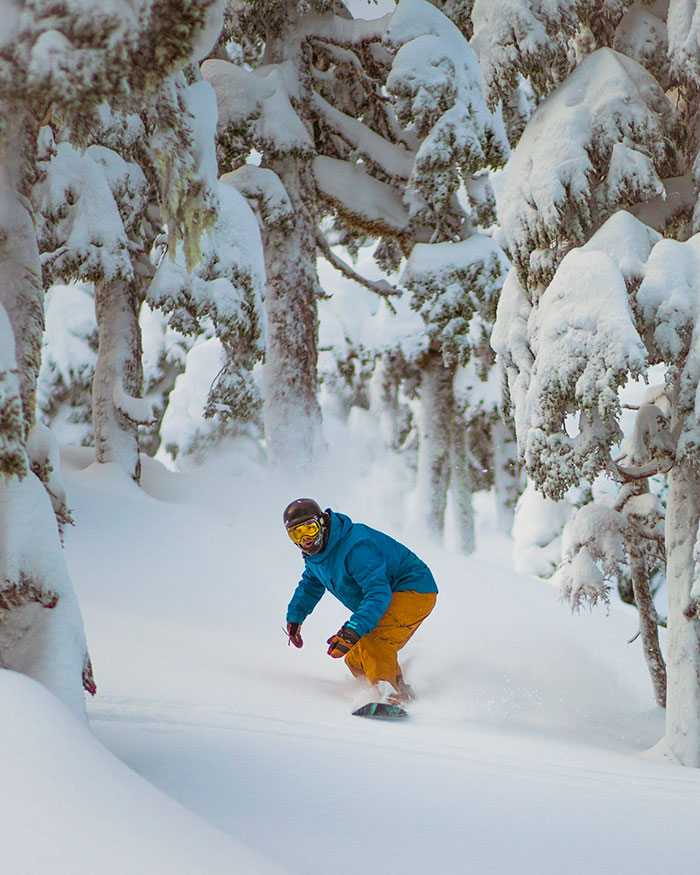 snowboarder riding powder in trees